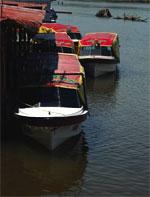 pescadordelunas415.jpg