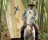 arre_caballo.jpg