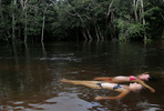 Imagen-Amazonas-3.jpg